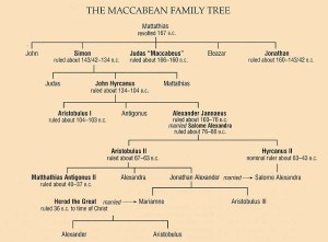 maccabeantree