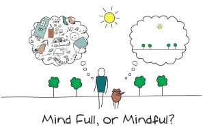 Mindfulness allegedly teaches people/students to be focused, to pay attention on purpose.