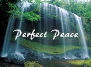 Image result for perfect peace