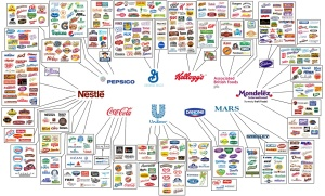 Just like the media, very few corporations own nearly ALL food companies. Remember, PEOPLE own the corporations.