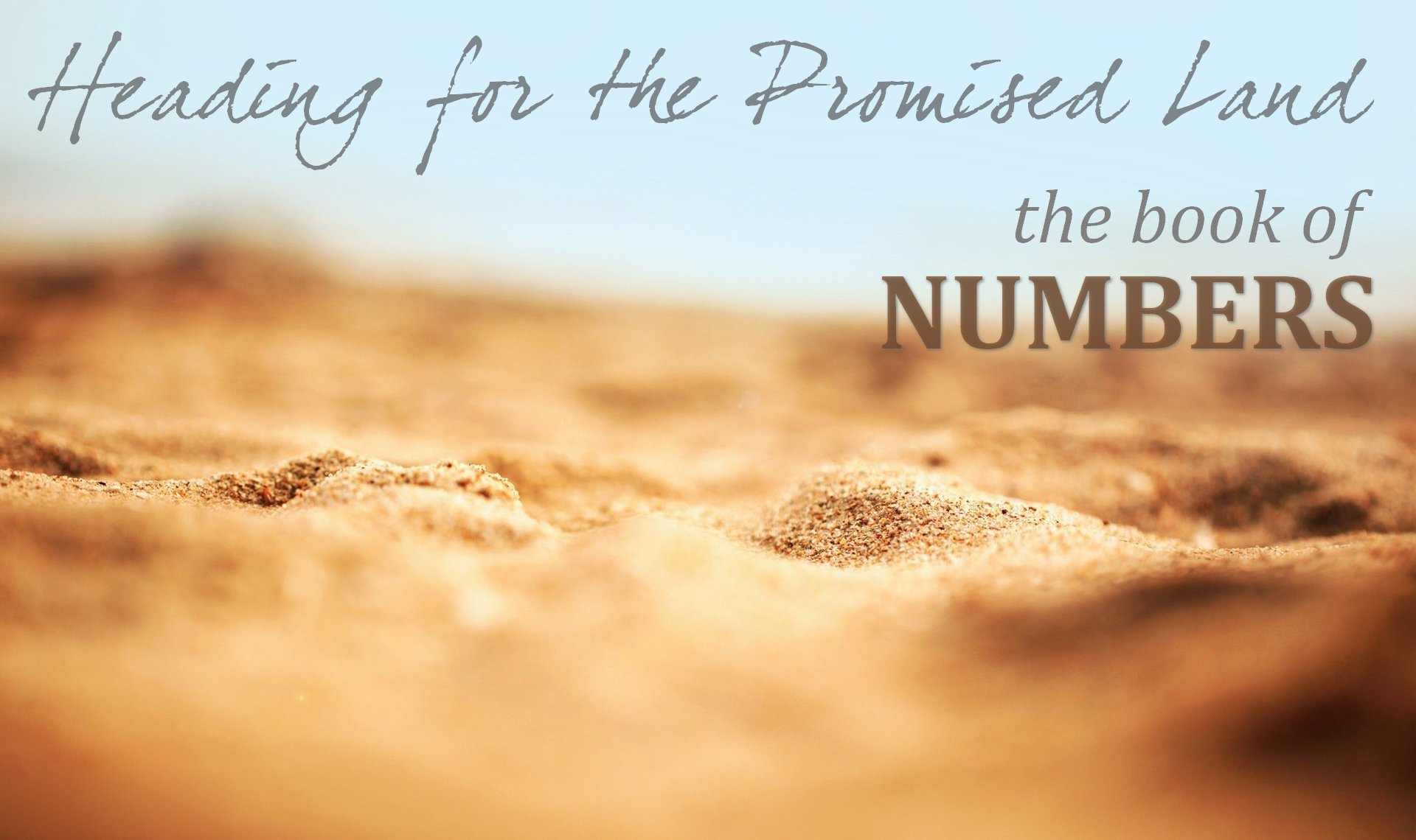 Numbers in the Picture Study Bible - The Book of Numbers ...