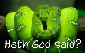 serpent_hath_god_said